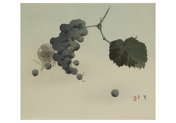 Mouse and Grapes Notecard