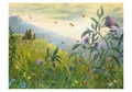 Robert Bissell: Pastoral Small Boxed Cards