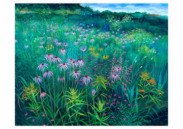 Rosalind Wise: Prairie Meadow with Echinacea Notecard