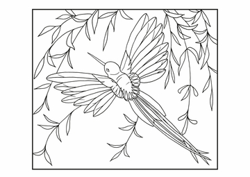 Siri Schillios: Feathered Friends Coloring Cards