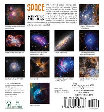 Space: Views from the Hubble Telescope 2019 Mini Wall Calendar