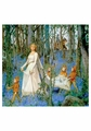 The Fairy Woods Notecard