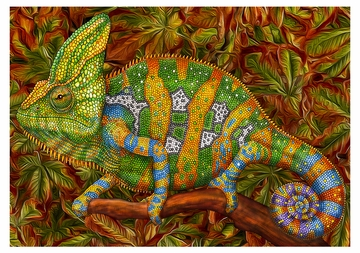 Tim Jeffs: Chameleons Boxed Notecard Assortment
