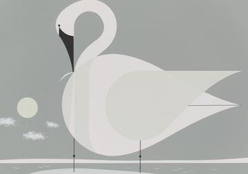 Trumpeter Swan Small Boxed Cards