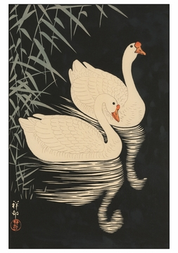 Two Geese Swimming near Reeds at Night Notecard