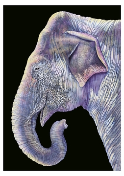 Asian Elephant Notecard