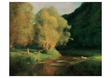 Willows by a Stream Notecard