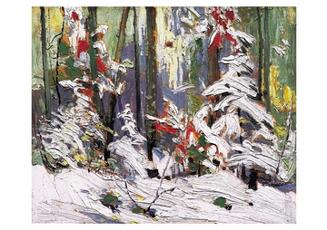 Wood Interior, Winter Postcard