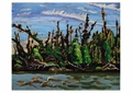 Yellowknife Forest Postcard
