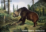 "Arctodus simus, Short-Faced Bear, 13"" x 19"""