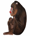 Baboon Monkey Wall Sticker