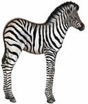 Baby Zebra Wall Sticker