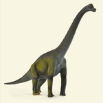Jurassic Brachiosaurus CollectA Dinosaur Scale Model Toy