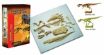 T-REX Dinosaur Skeleton Kit Dig Dino Excavation Bones