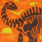 Dino Dig Party Lunch Npkins, 16 pc