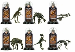 3D Dinosaur Fossil Bones Replicas Skeletons Kits, 12 Sets