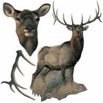 Museum of Natural History Elk Wild Forest Animal Wall Sticker
