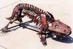Eryops Skeleton