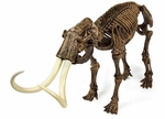 Geoworld Prehistoric Woolly Mammoth Skeleton Model Fossil Replica