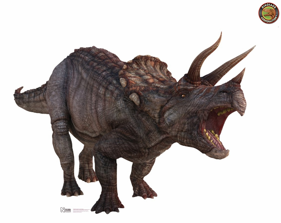 giant triceratops dinosaur cardboard stand up