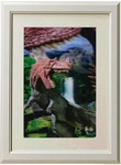 3D Jurassic World Ceratosaurus Framed Picture