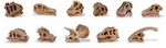 Dig Dinosaur Skulls Excavation Party, 11 pcs