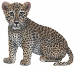 Leopard Cub Wall Sticker