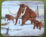 Mammoth Mouse Pad Ice Age Animals