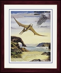 "Pteranodon, Art Picture, Framed 17"" x 14"""