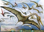 Pterosaurus of The Mesozoic Era