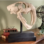 Saber Tooth Cat Skull Fossil Replica