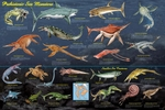 Prehistoric Marine Reptile Sea Monsters Poster