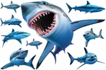 Museum of Natural History Sharks Sea Life Animal Wall Stickers
