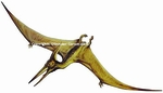 "Small Pteranodon Wall Sticker, 17"" x 7"""