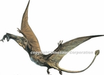"Small Pterodactyl Wall Sticker, 12"" x 9.5"""