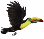 Toucan Wall Sticker
