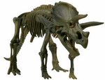 3D Dino Horizon Triceratops Bone Skeleton Puzzle Model Toy