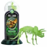 Triceratops Glow In The Dark Skeleton Puzzle Kit