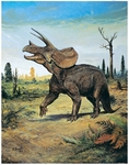 "Triceratops Wall Mural 45"" x 57"""