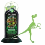 3D Dino Horizon Glow in the Dark Velociraptor Bones Skeleton Puzzle Kit