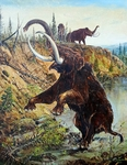 Woolly Mammoth, Pleistocene epoch