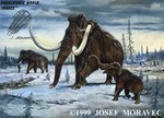 "Woolly Mammoth Family, Giclee on Canvas, 30"" x 24"""