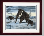 "Woolly Mammoth, Framed 17"" x 14"""