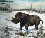 "Woolly Rhino, Coelodonta, Ice Age Mammal, Art Picture, 13"" x 19"""