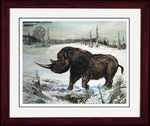 "Woolly Rhino, Ice Age Animal, Coelodonta,  Framed, Picture, 17"" x 14"""