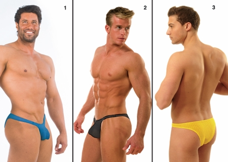 Net PowerLifter Brief