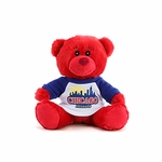 "5"" Chicago Souvenir Bear"