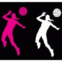 Volleyball Hitter Window Decal - in 2 Colors