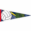 Volleyball Pennant