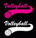 Volleyball Swoosh Window Decal - in 2 Colors